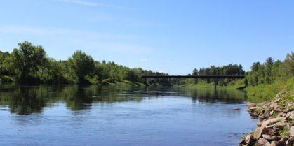 Miramichi Fishing Report for Week of August 4, 2016