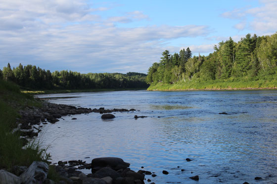 Miramichi Fishing Report for Thursday, August 11, 2016