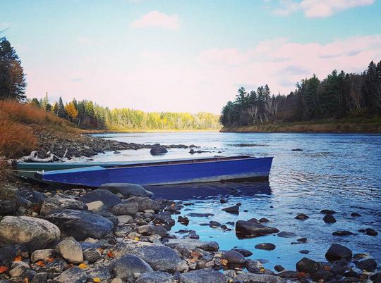 Miramichi Fishing Report for Thursday, October 27, 2016
