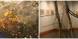 Gallery talk with Mike McEwing
