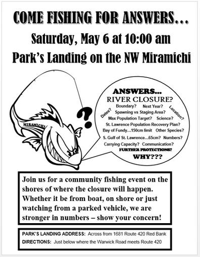 Miramichi Fishing Report for Thursday, May 4, 2017