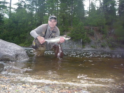 Miramichi Fishing Report for Thursday, August 17, 2017