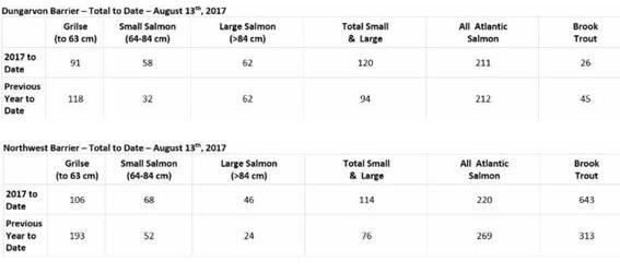 Miramichi Fishing Report for Thursday, August 24, 2017