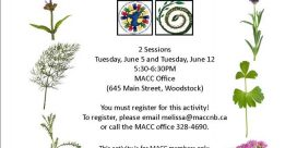 MACC Members Par-Tea – June 5th and June 12th