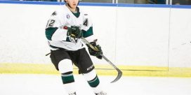 Slammers Toole Named Gongshow Star for January